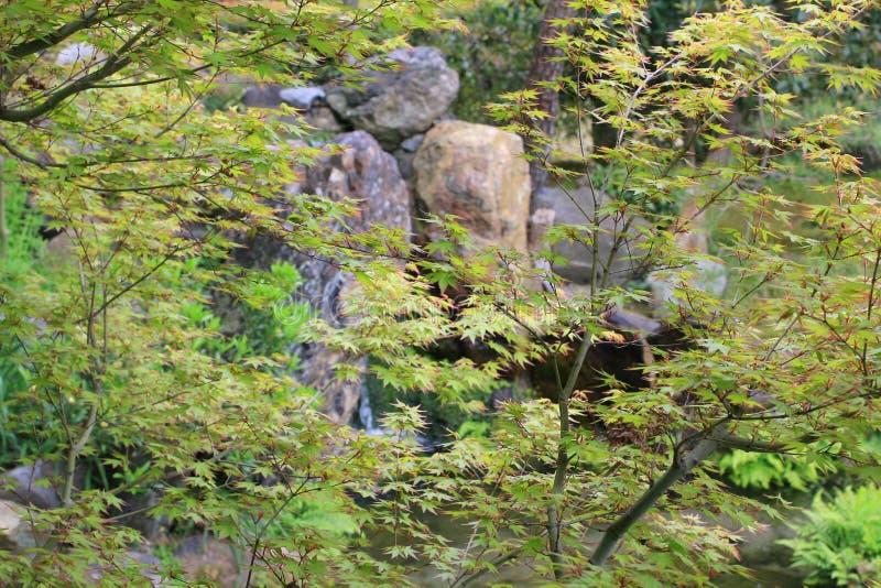 jardin d'en de shosei chez le Japon image stock