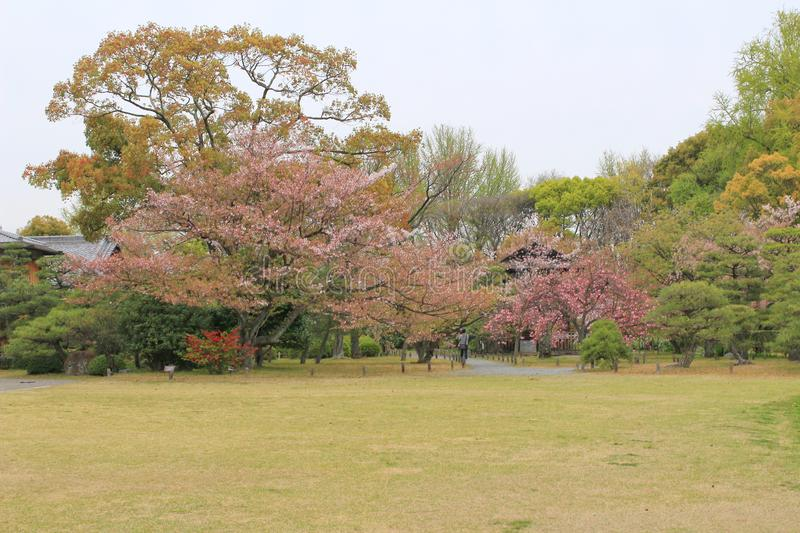 jardin d'en de shosei chez le Japon photo stock