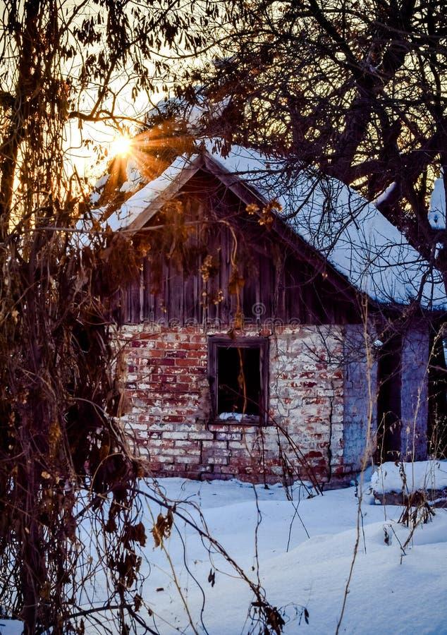Jardin d'hiver et vieil immeuble de brique abandonné photos libres de droits