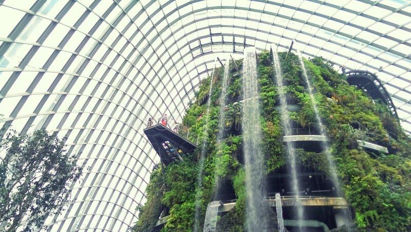 Jardin d'intérieur et cascade image libre de droits
