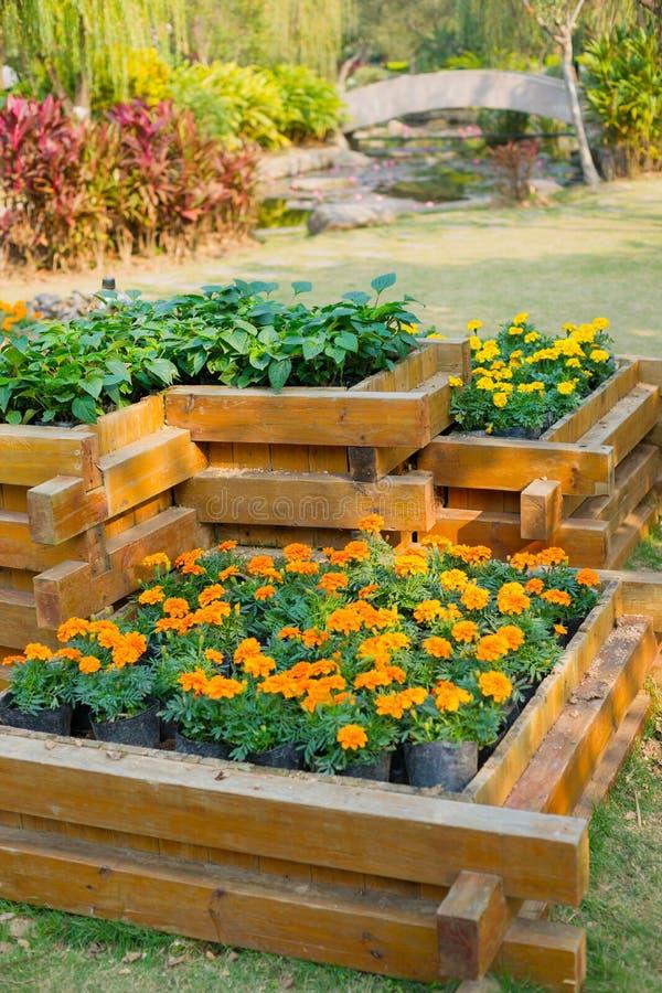 jardin d 39 ornement image stock image du sunlight centrale 30554247. Black Bedroom Furniture Sets. Home Design Ideas