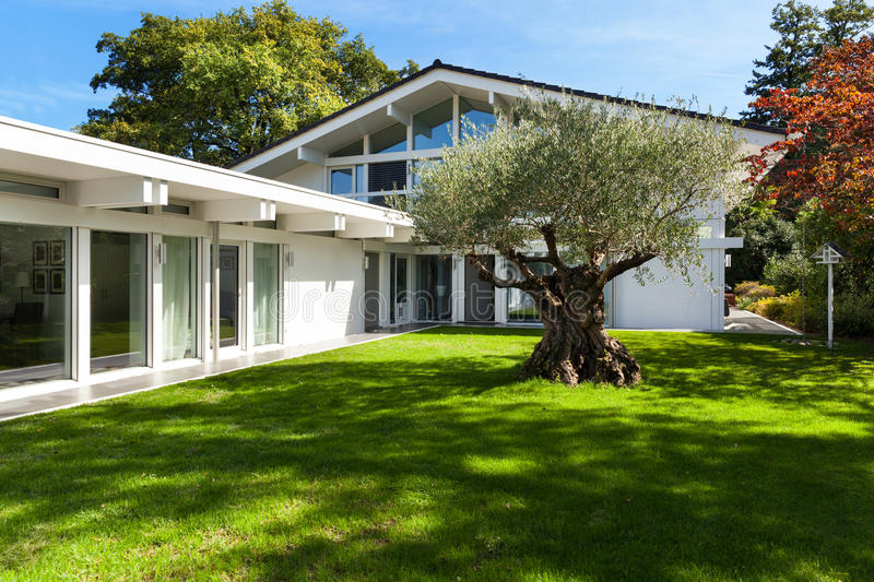 Jardin d 39 une maison moderne avec l 39 olivier photo stock for Photo jardin moderne