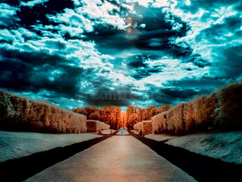 Jardin dans l'infrarouge photos stock