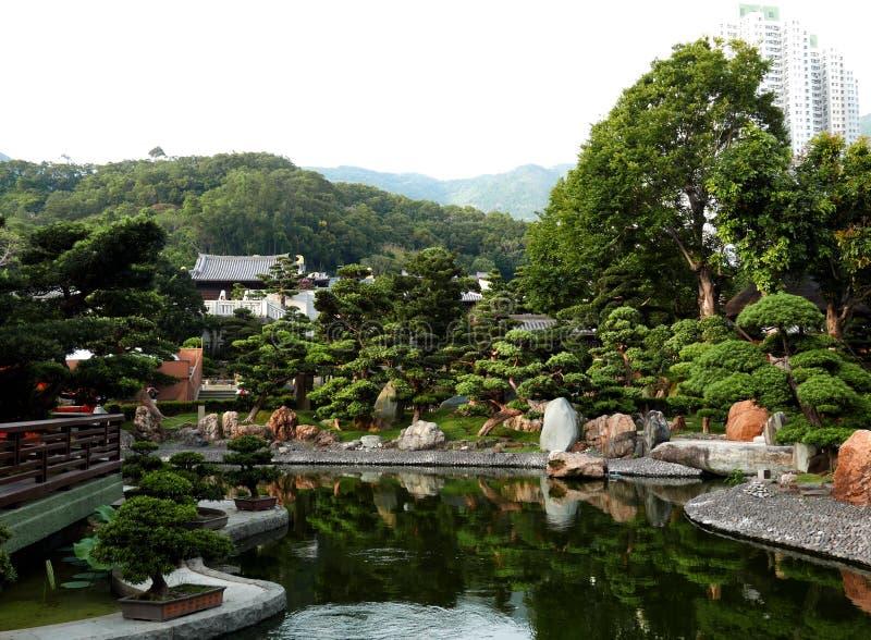 Jardin de bonsaïs dans le Chi Lin Nunnery en Hong Kong photos stock