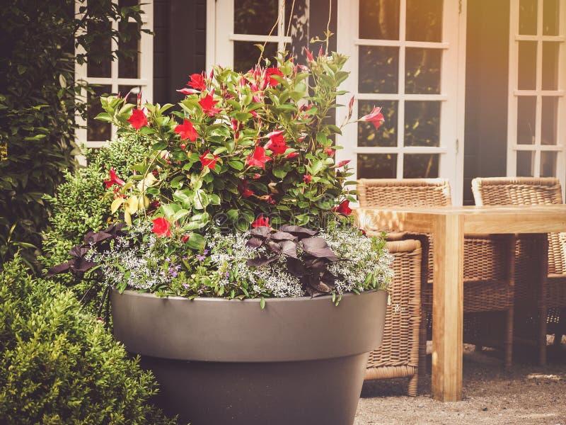 Jardin de conteneur avec des meubles de patio images libres de droits