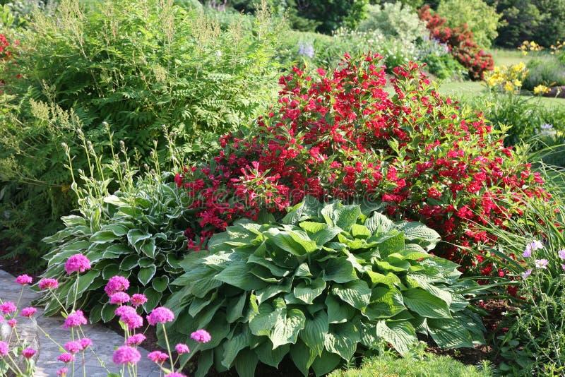 Jardin de fleur nordique photo stock