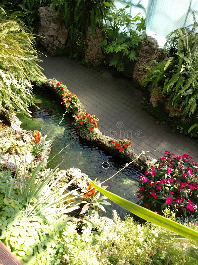 Jardin de fleurs photo libre de droits