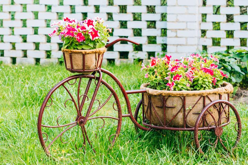 Jardin de fleurs décoratif de panier d'Old Bicycle Equipped de modèle de vintage images libres de droits