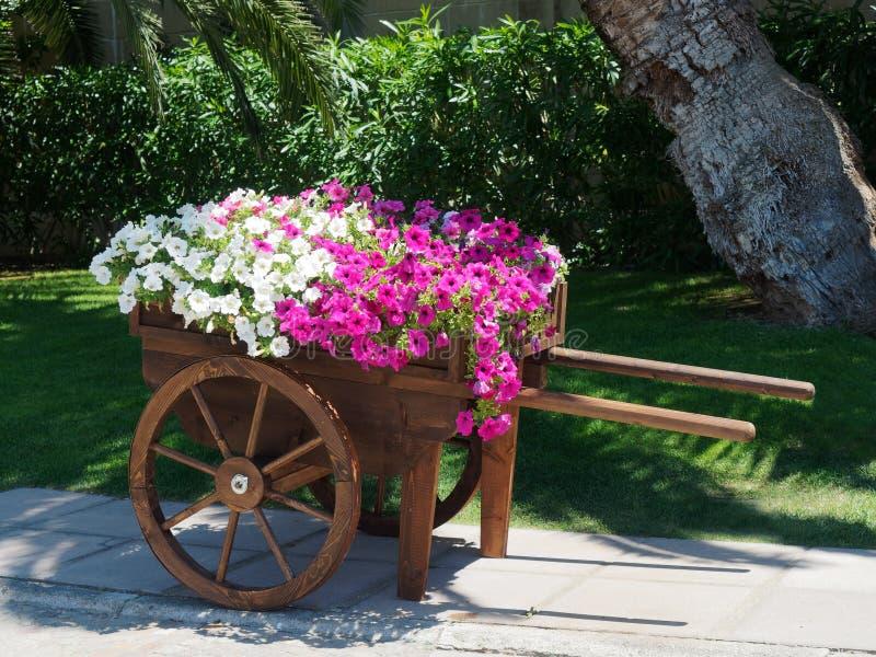 jardin de fleurs de brouette photo stock image du jardinier t 95523258. Black Bedroom Furniture Sets. Home Design Ideas