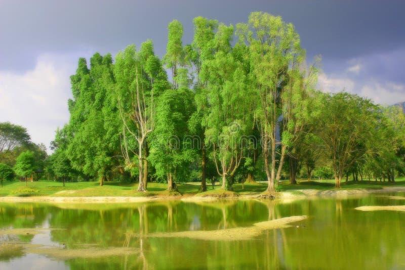 Jardin de lac Taiping image stock
