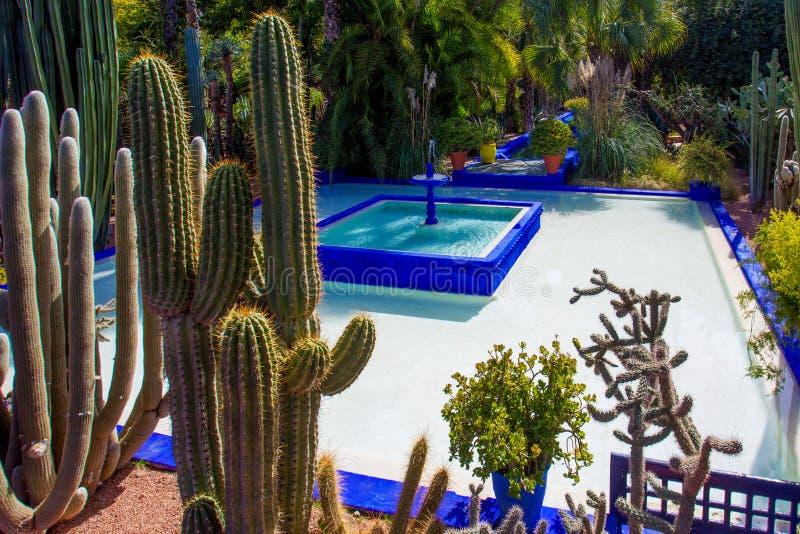 Jardin de Majorelle ? Marrakech image stock