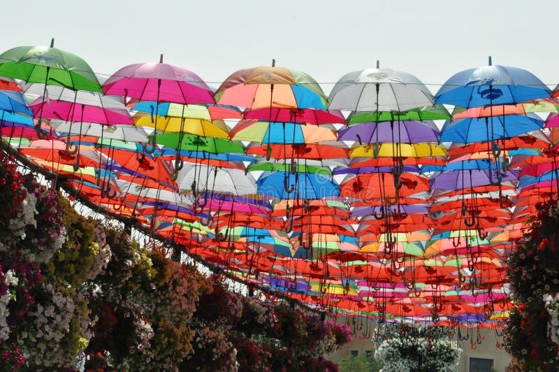 Jardin de miracle de Dubaï aux EAU photos stock