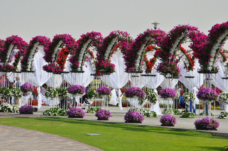 Jardin de miracle de Dubaï aux EAU images stock