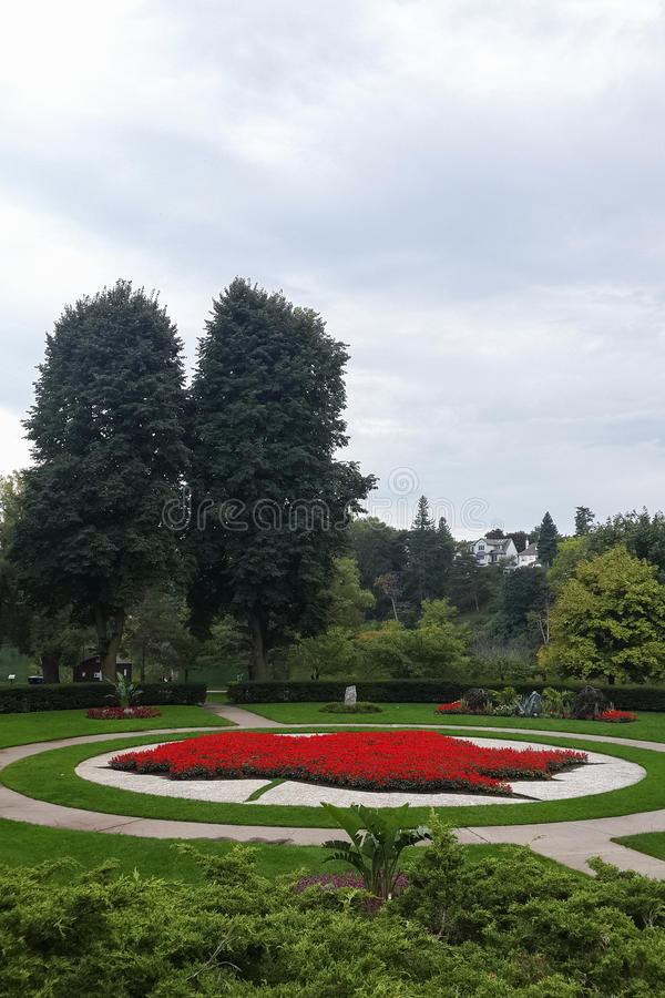 Jardin de modèle de feuille d'érable, fleurs rouges, haut parc, Toronto photos libres de droits