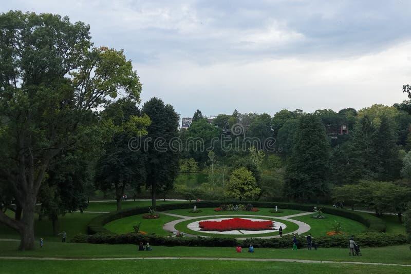 Jardin de modèle de feuille d'érable, fleurs rouges, haut parc, Toronto photographie stock libre de droits