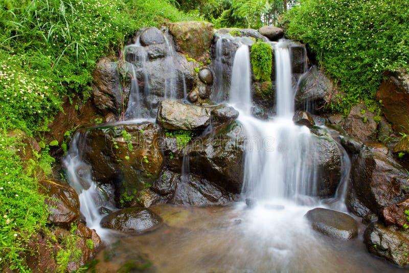 jardin de nature avec la petite cascade de cascade photo stock image du petit puret 51718560. Black Bedroom Furniture Sets. Home Design Ideas