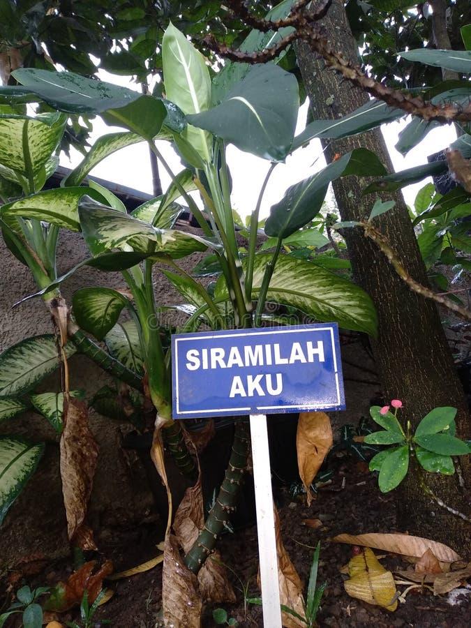 Jardin de nom de signe images stock