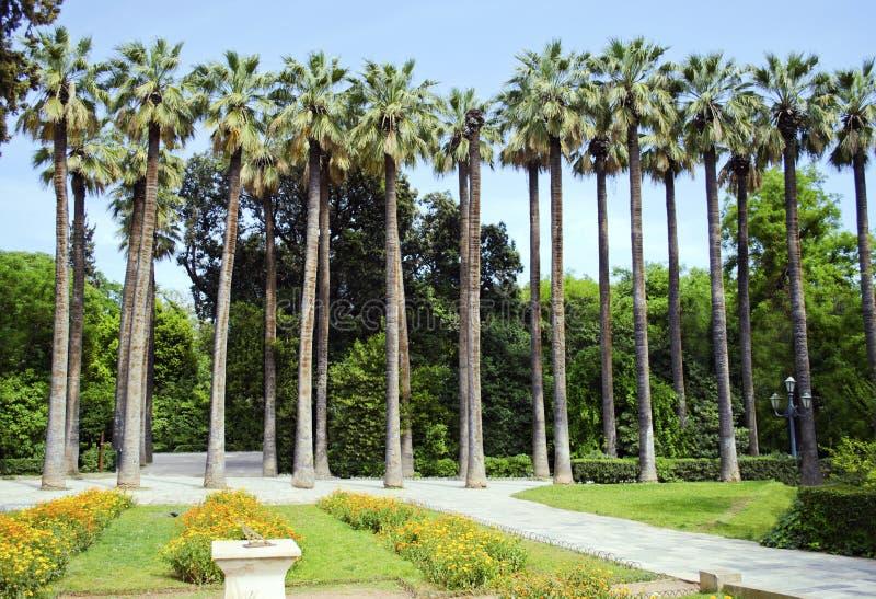Jardin de ressortissant d'Athènes images libres de droits