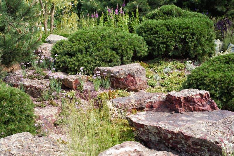 Jardin de rocaille avec les conifères et le granit photographie stock libre de droits