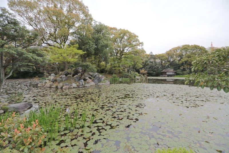 Jardin de Shosei ? Kyoto, Japon images stock