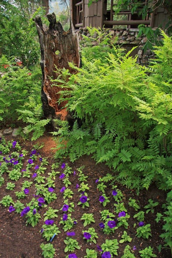 Jardin de source photographie stock libre de droits