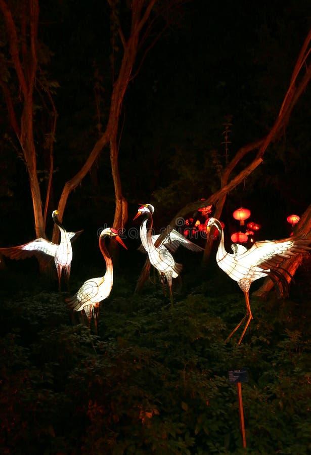 Jardin de spectacle de lumières dans le jardin botanique de Montréal images stock