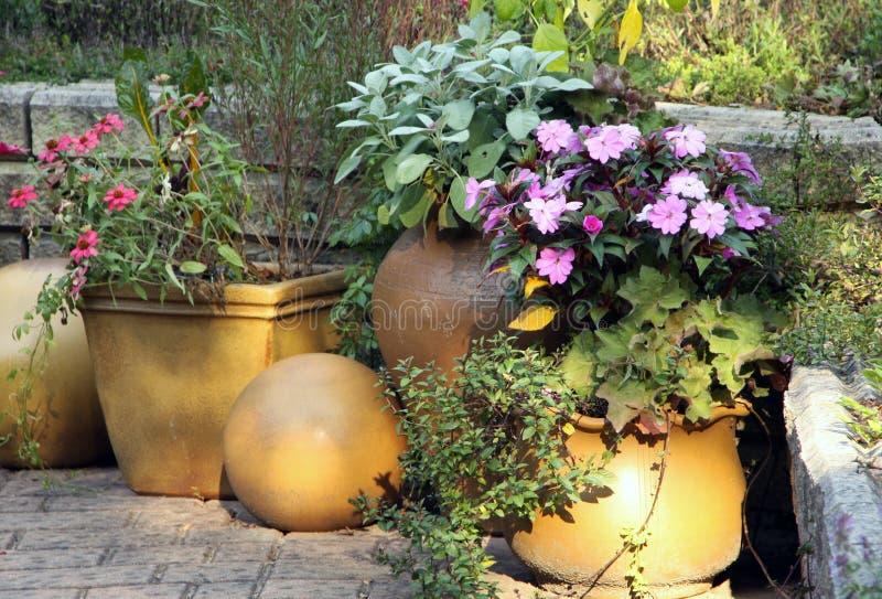 Jardin de terrasse avec des plantes en pot photo stock for Plante pot jardin