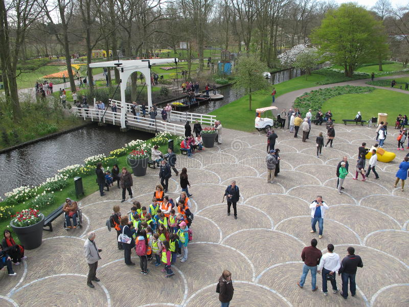 Jardin de tulipes image libre de droits