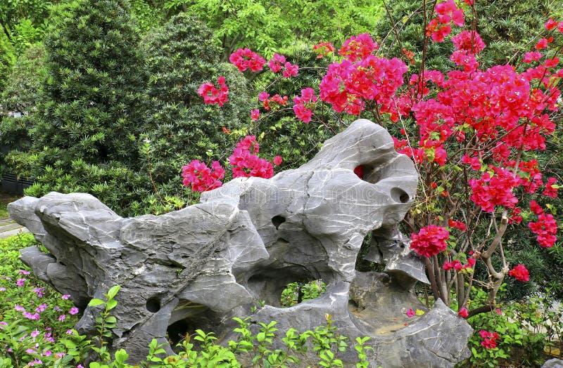 Jardin de zen avec la roche de taihu photographie stock libre de droits