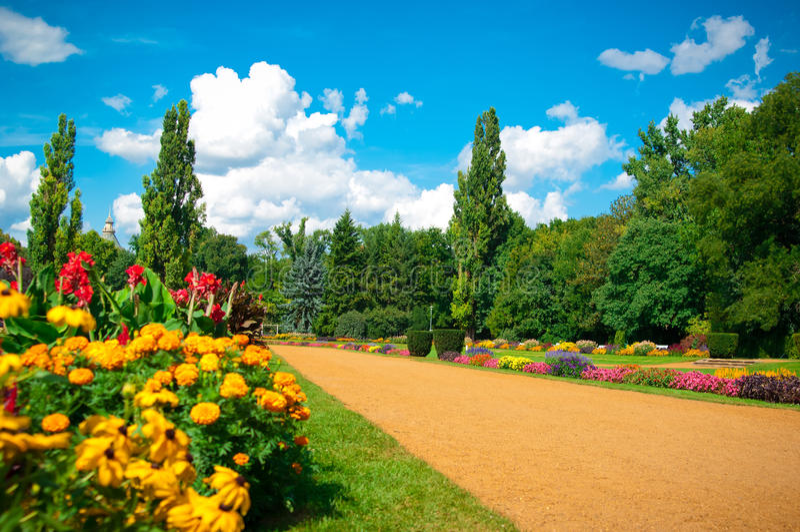 Jardin des fleurs photo stock