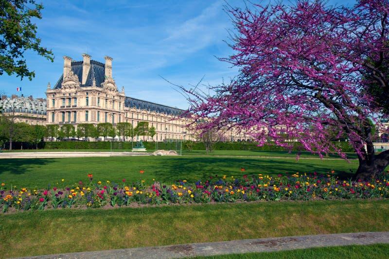 Jardin des Tuileries (The Tuileries Garden), Pari royalty free stock images
