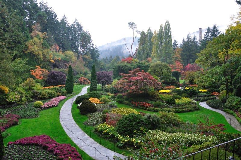 Jardin en brouillard images libres de droits