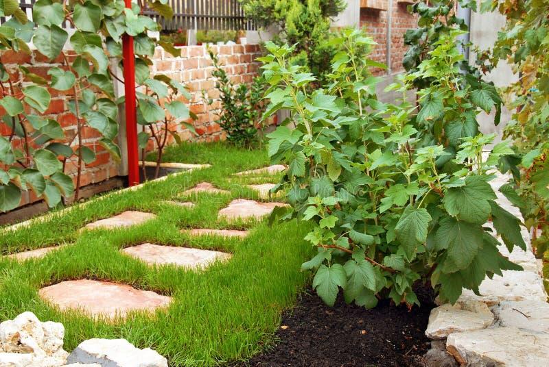 Jardin en cour à la maison image libre de droits