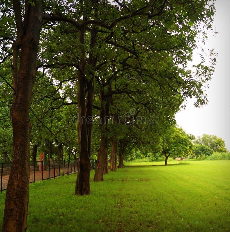 Jardin en dehors de vieux fort à Delhi photographie stock libre de droits