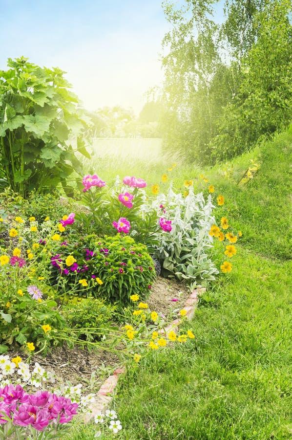 Jardin ensoleillé avec le lit de fleur photos stock