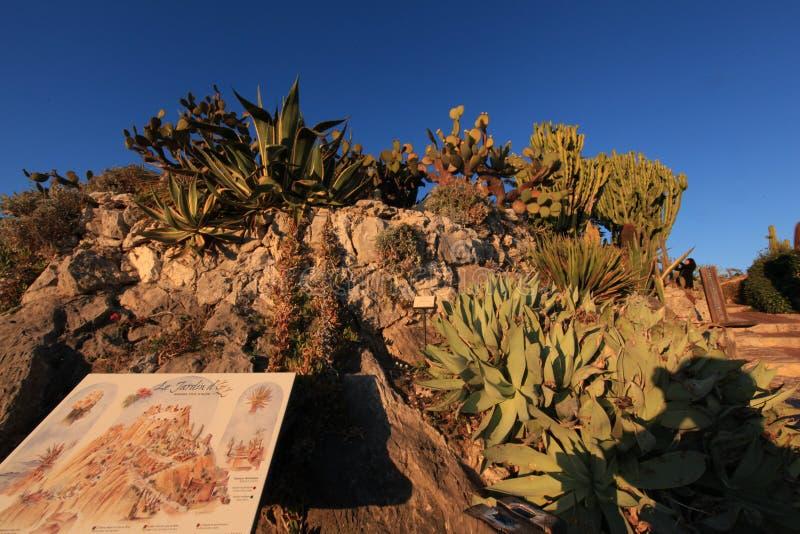 Jardin Exotique d 'Eze fotos de archivo libres de regalías