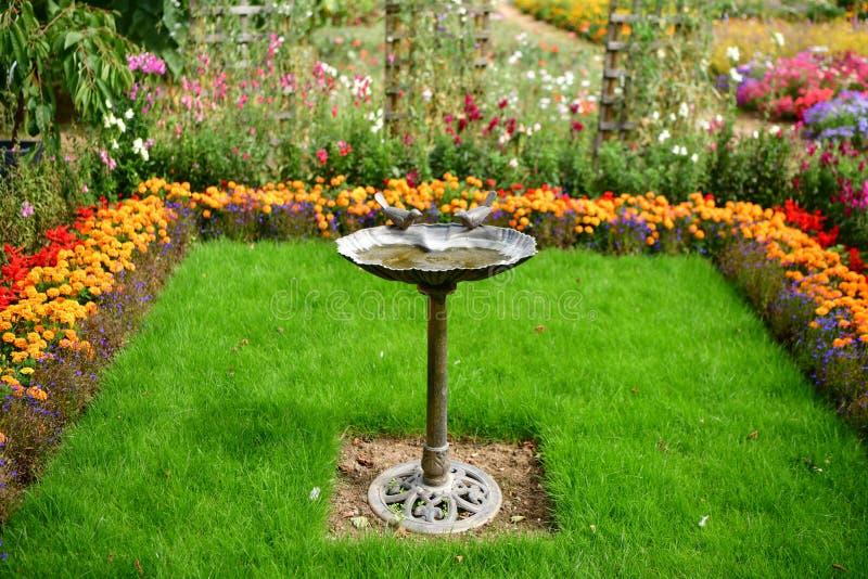 Jardin fleuri coloré, plénitude de fleurs d'été photos stock
