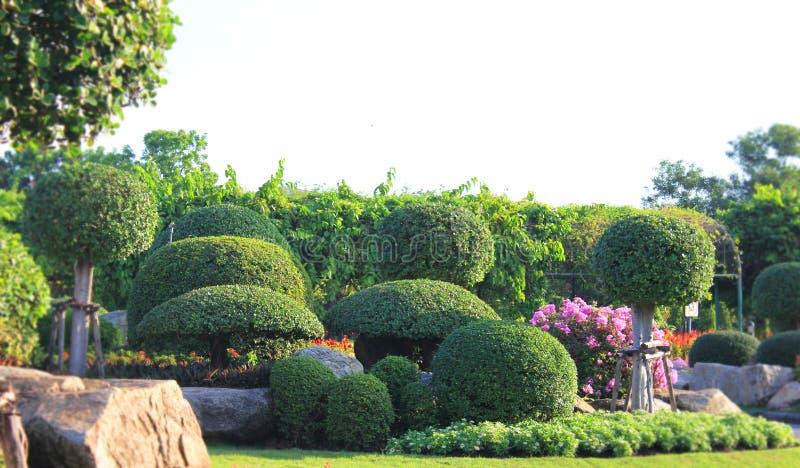 Jardin formel aménagé en parc coloré images stock
