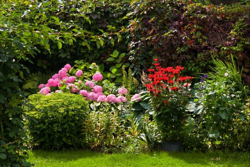 Jardin formel de floraison conçu bel par été photo stock