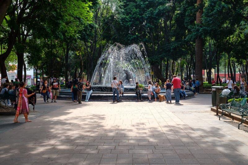 Jardin Hidalgo, ένα όμορφο πάρκο στην ιστορική γειτονιά Coyoacan στην Πόλη του Μεξικού στοκ εικόνες