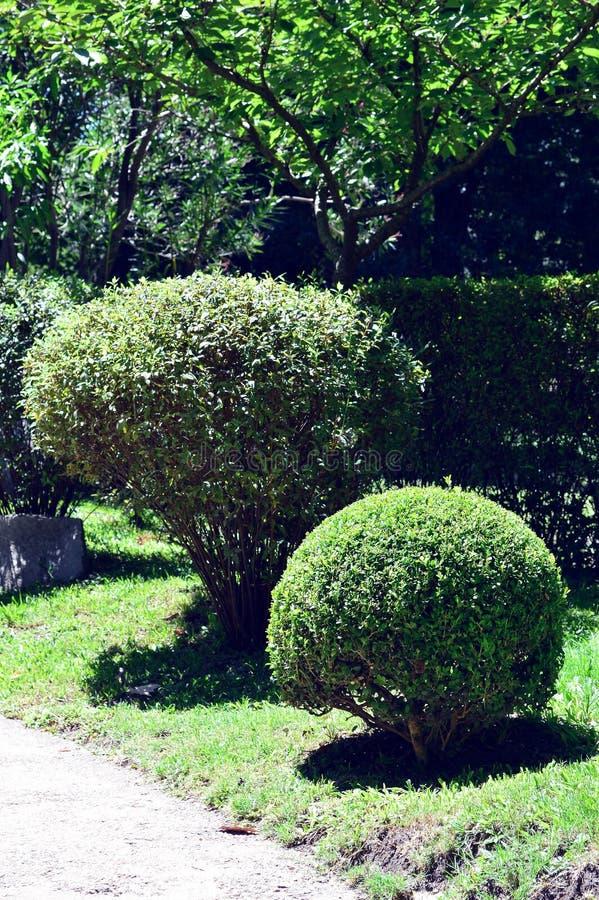 Jardin Japonés royalty-vrije stock afbeeldingen