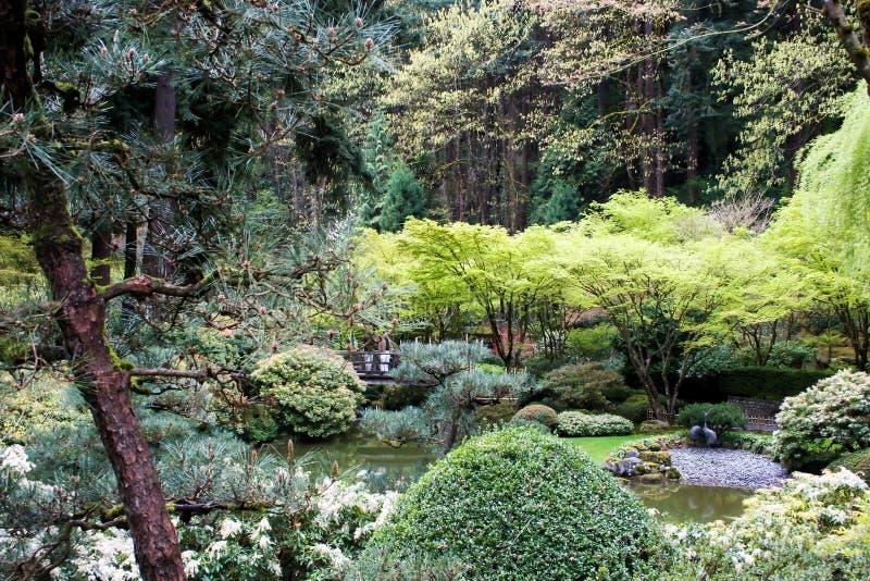 Jardin japonais image libre de droits