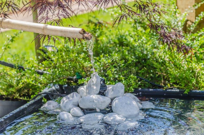 Jardin Japonais Avec La Fontaine En Bambou Photo stock - Image ...