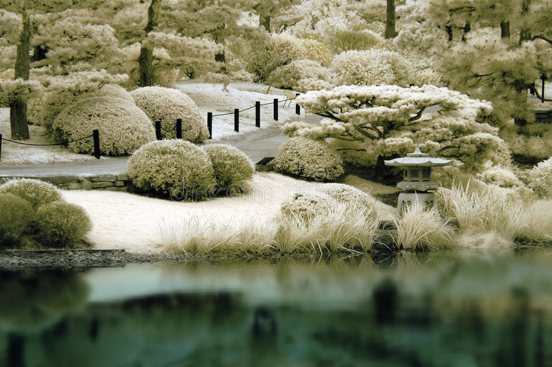 Jardin japonais dans l'infrarouge photos libres de droits