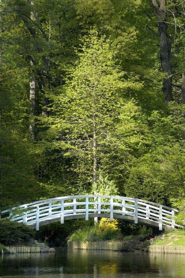 Jardin japonais de zen photographie stock libre de droits