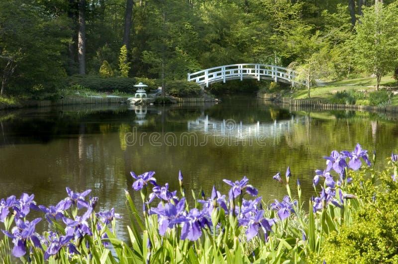 Jardin japonais de zen image libre de droits