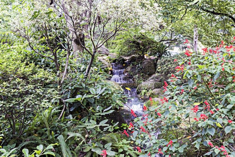 Jardin japonais en parc Santos Dumont, Sao Jose Dos Campos, Sao Paulo, Brésil images stock