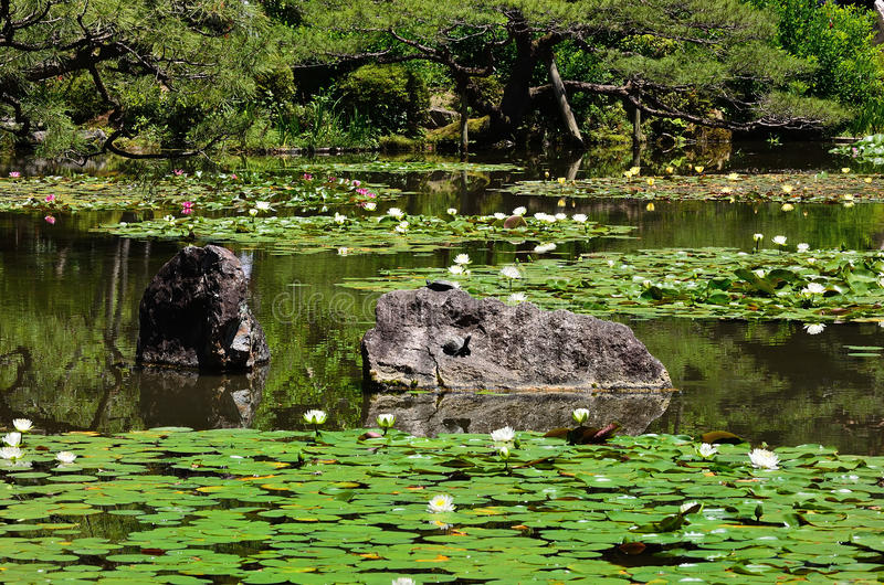 Jardin japonais fleurissant de tombeau de heian kyoto for Hotel jardin de fleurs kyoto