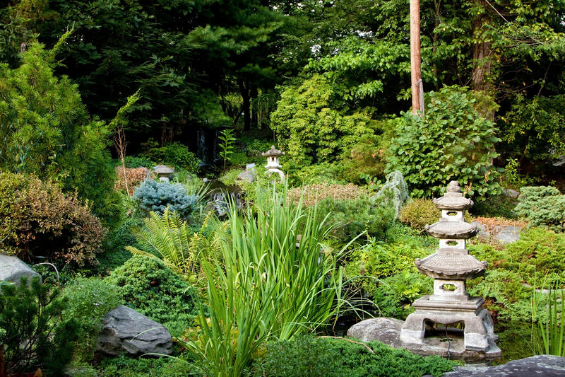 Jardin japonais paisible image libre de droits