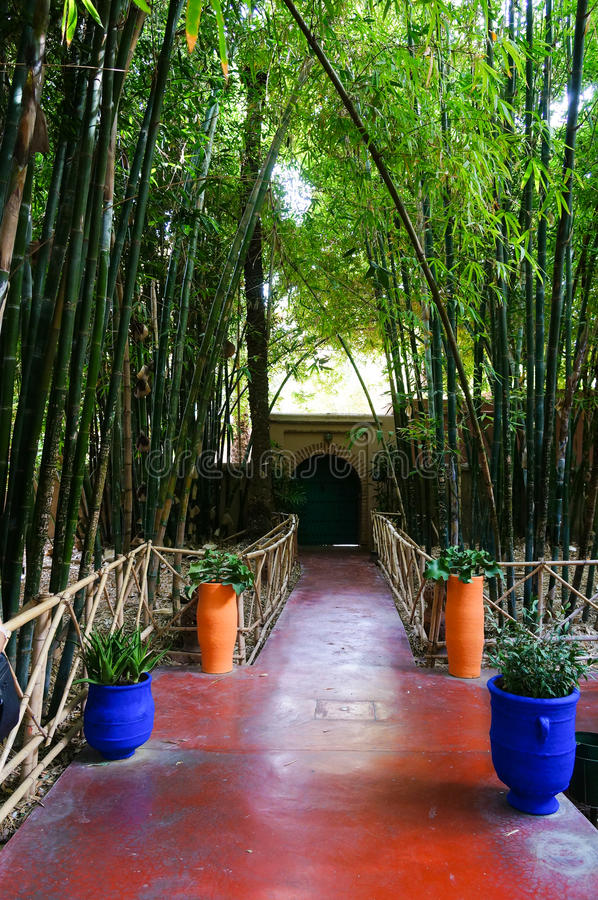 Jardin Majorelle Garden In Marrakesh, Morocco Stock Image - Image of ...